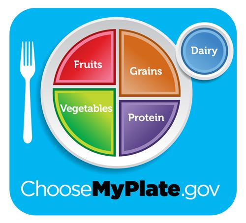 The USDA MyPlate nutrition guide for Americans, which includes fruits, vegetables, grains, protein, and dairy.